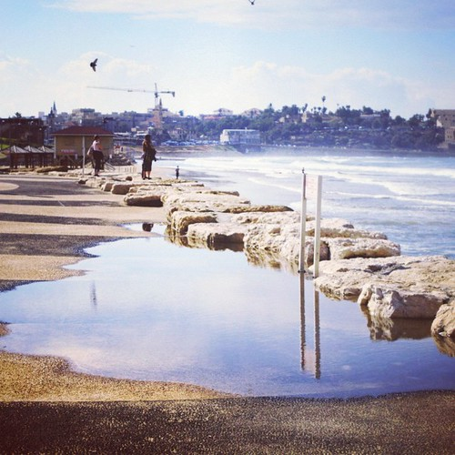 #picfx #sea #seashore #telaviv #tlvspot #autumn