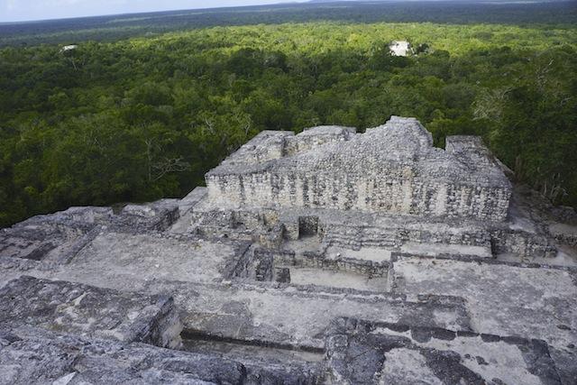 Calakmul 95