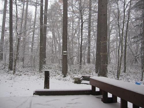 初の積雪 2012.11.14 by Poran111