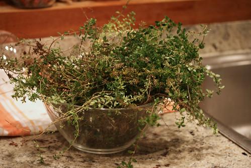 thyme bowl 014