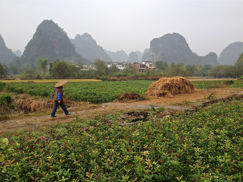 Farm near Guilin 2