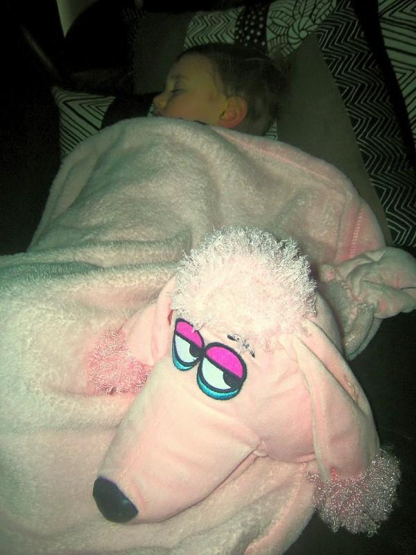 CuddleUpPet Pink Poodle