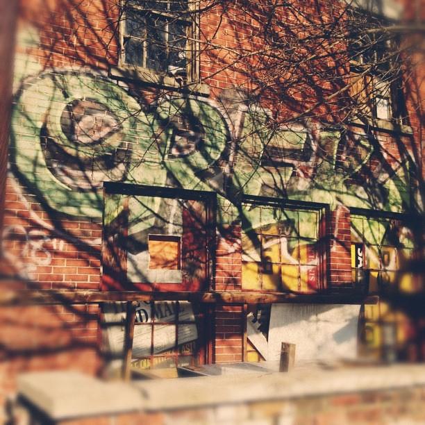 Urban. #vscocam