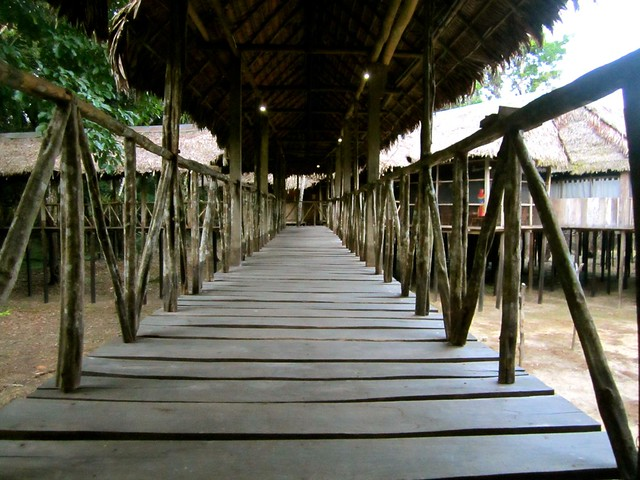 Tahuayo Lodge-boardwalk-amazon-jungle