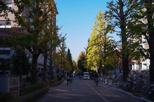京都大学 北部キャンパス