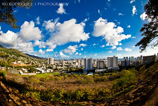 Honolulu from a Distance
