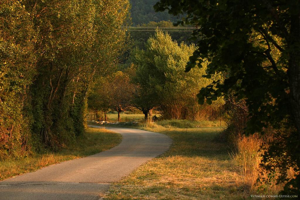 Les montagnes sont boisées et riches en biodiversité. Le Mont Ventoux a été classé Réserve de Biosphère par l'UNESCO en 1994.