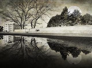 The stillness still that doesn't end