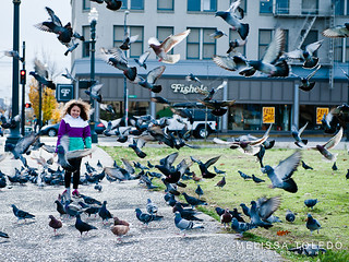 Celia meets the Burnside pigeons