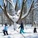 Quoi faire en hiver : Sentiers de raquettes - Courvalloise