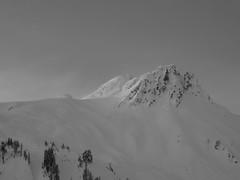 Mt Ann 117