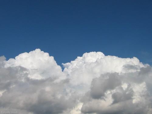 Cumulus by Coyoty