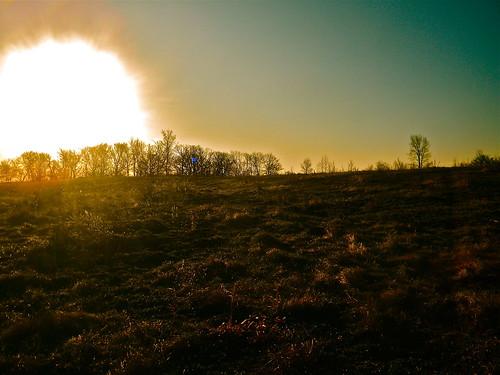 blue orange sun minnesota forest sunrise landscape albany