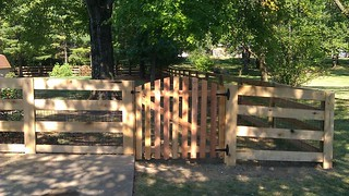 Kentucky Board Style Fence