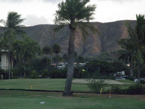 Ala Wai Golf Course 236