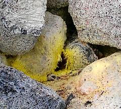sulfur2