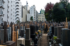 Cemetery in Tokyo City