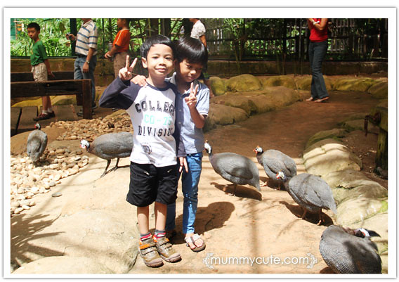8241075474 cf511a2896 z Bercuti di lost world of tambun