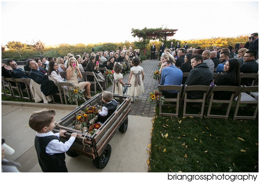 Jori_Justin_Palm_Event_Center_Wedding_BrianGrossPhotography-227_WEB