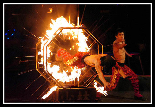 Ringling Bros & Barnum Bailey Circus 7