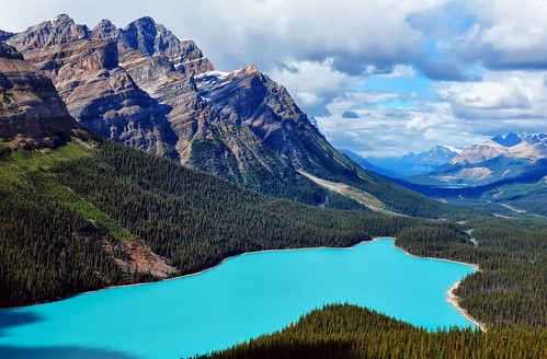 Blue Turquoise at Peyto Lake