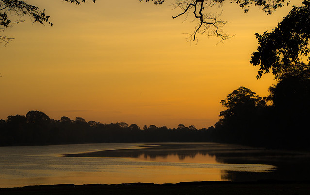The golden light of morning