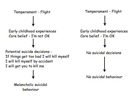 Suicide decision heirarchy 1 Jpeg