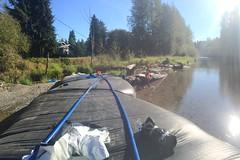 Undamming the river