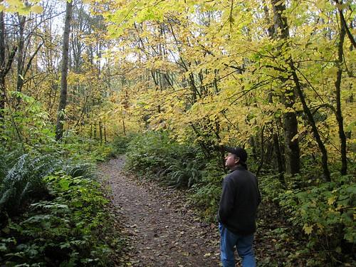 Fall at Lord Hill Regional Park