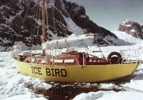 Το Ice Bird