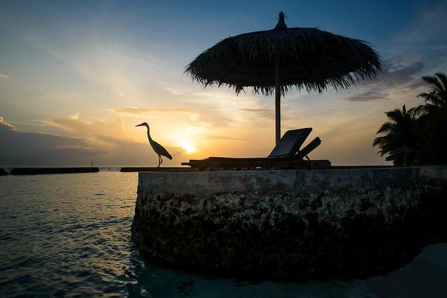 maldivian morning