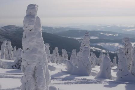Předpověď zimy 2012/13 podle svatomartinské pečínky
