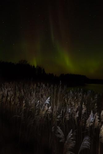 longexposure suomi finland landscape le aurora auroraborealis borealis vaasa vasa norrsken longexp sundom