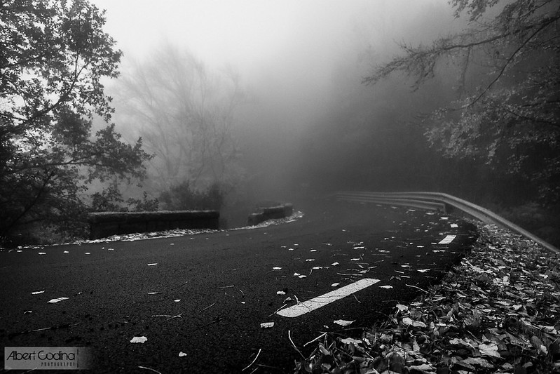 Carretera i Boira | Road and Fog
