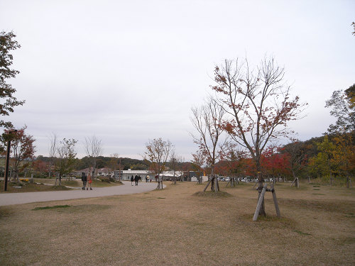 『Cafe +f(カフェ プリュス・エフ)』@馬見丘陵公園-11