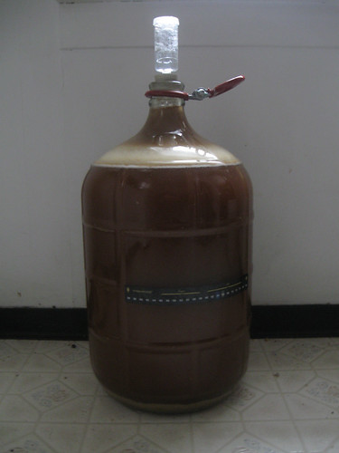 Mirror Pond Pale Ale Clone - Fermentation
