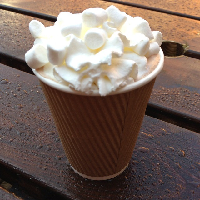 Hot Chocolate With Marshmallows & Whipped Cream @ Wollaton Hall ...