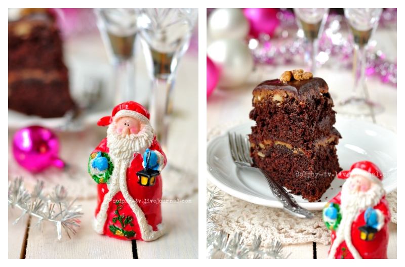 Turtle Cake and Santa