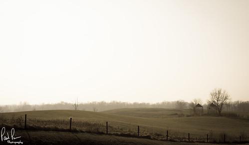 sun mist farm hill foggy hills rise rolling