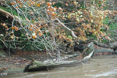 Abandoned boat, Tresillian River by Stocker Images