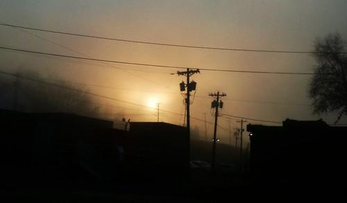 trees fog sunrise utilitypoles thanksgivingday2012