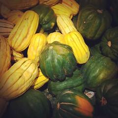 carving(0.0), summer squash(0.0), plant(0.0), fruit(0.0), melon(0.0), vegetable(1.0), calabaza(1.0), produce(1.0), food(1.0), winter squash(1.0), cucurbita(1.0), gourd(1.0),