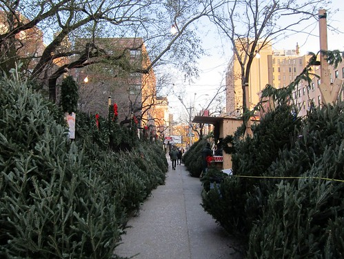Christmas trees, Second Avenue