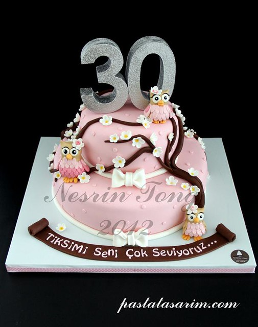 PINK OWL BIRTHDAY CAKE (Medium)