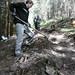 Sat, 08/04/2007 - 11:28 - On the 4th of August 2007 the Glentress Trailfairies decamped to Elibank forest in order to help prepare part of the course for the Selkirk Merida Marathon being held the following day.  Our task was to finesse a descent that had already been roughly machine-dug. Here Kenneth (I think) uses a McLeod to scrape loose debris from the trail surface.