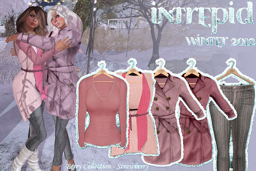 NEW!!! Intrepid:: Winter 2012 Strawberry