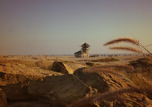 Coronado Beach by Vilma Salazar