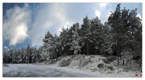 Nieve | Puerto del León | Panorámica