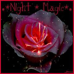 .★Night * Magic★. Award