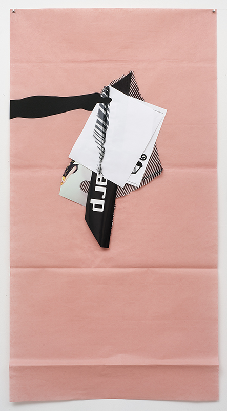 Frances Stark, Stupidity (pink), 2009